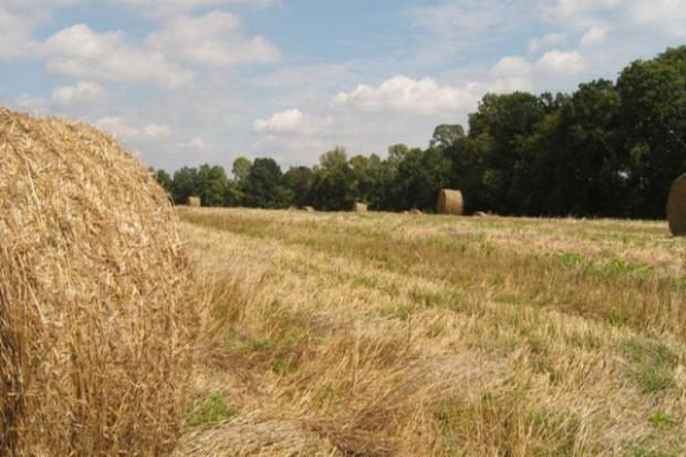 Problem z odbiorem biomasy