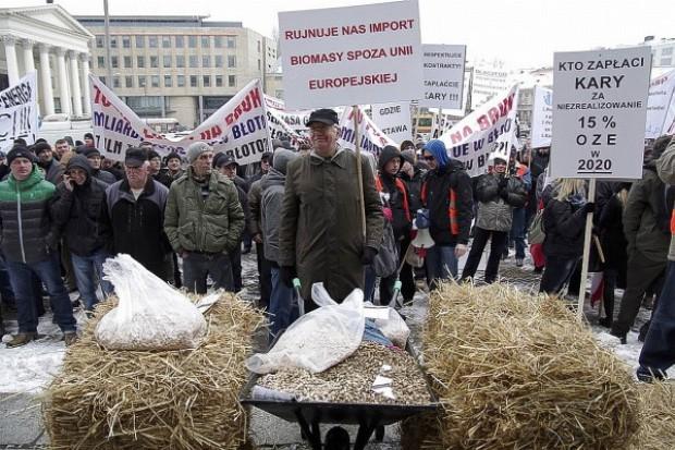 Protest producentów biomasy przed MG