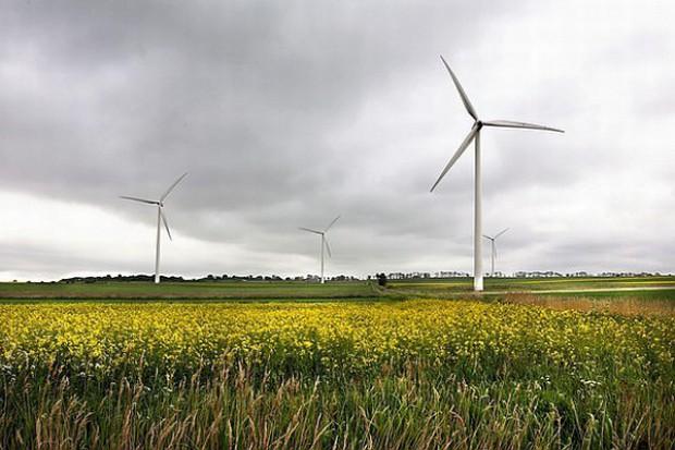 Rozwijają energetykę wiatrową