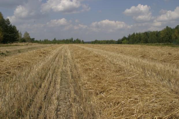 Będzie ziemia dla rolników z Opolszczyzny?