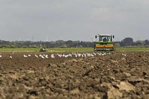 ODR Barzkowice: Opóźnione siewy zbóż jarych
