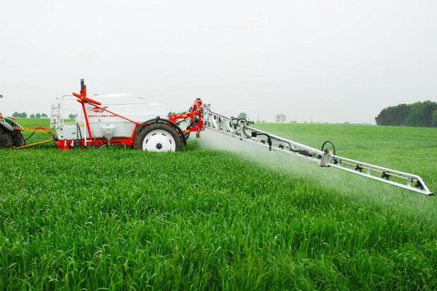 Czynniki skutecznego działania fungicydów