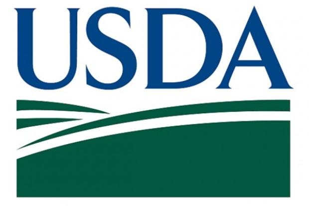 Ceny zbóż nie zareagowały na dane USDA