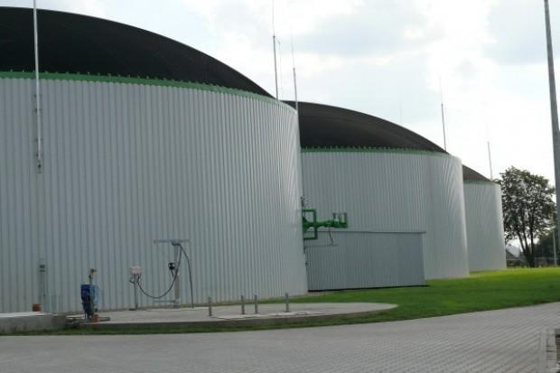 Współspalanie barierą dla rozwoju biogazowni