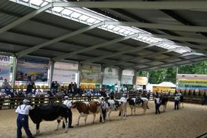 Jubileuszowa wystawa zwierząt w Szepietowie