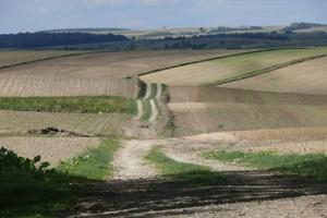 Specjalny instrument dla małych rolników