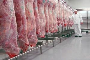 Eksport mięsa wołowego o 8 proc. wyższy