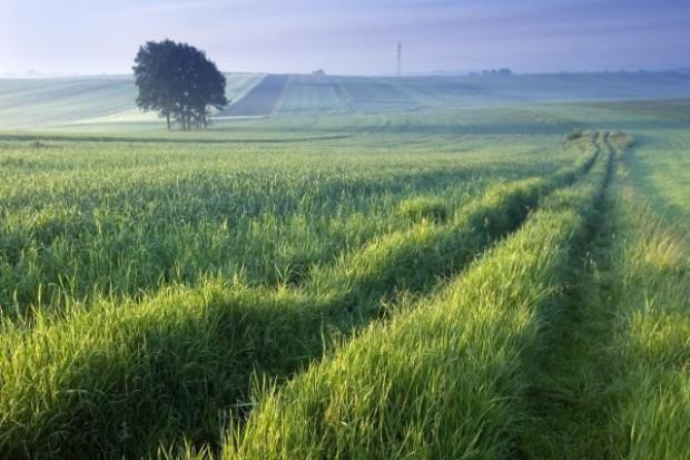 WPR - korzyści dla polskiego rolnika