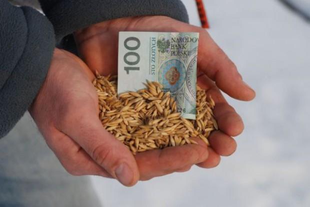 Żniwa w pełni – ceny bardzo niskie