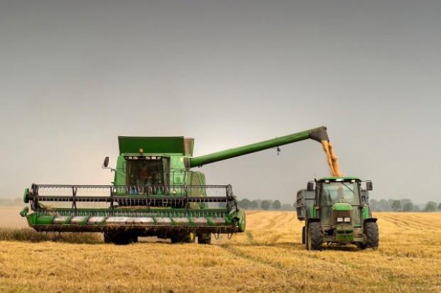 GUS: Zbiory zbóż wyniosą 23,7-25,1 mln t