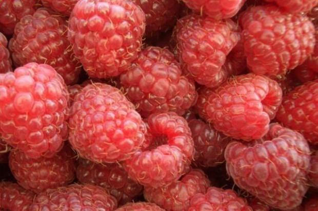 Tanie maliny i inne owoce miękkie
