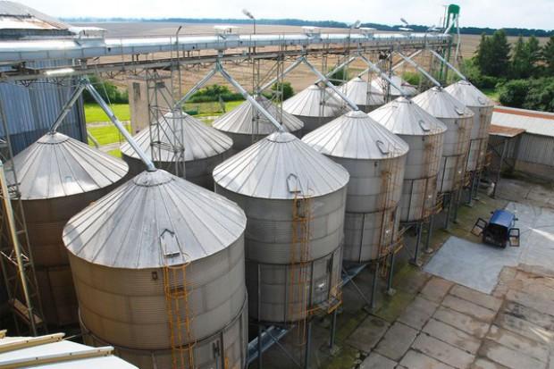 Ceny zbóż w najważniejszych skupach w Polsce