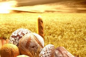 Bez opodatkowania sprzedaży przetworzonych produktów rolnych