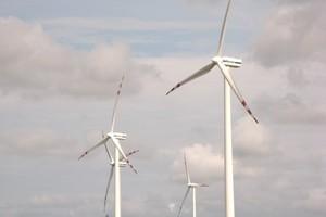 Protestują przeciwko powstaniu farmy wiatrowej
