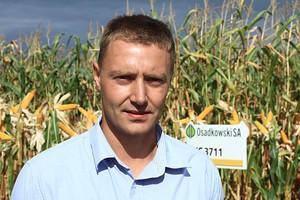 Kukurydza kończy wegetację - trudna była wiosna