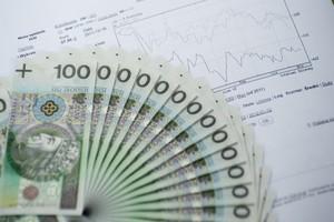 Rząd przyjął informację ws. sytuacji ekonomicznej w polskim rolnictwie