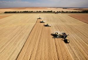 UOKiK wciąż bada zmowę cenową na rynku zbóż