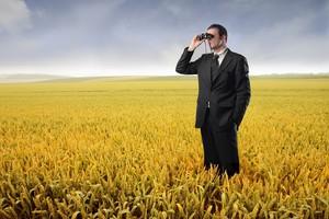 """""""Puls Biznesu"""": Zboże idzie jak woda"""