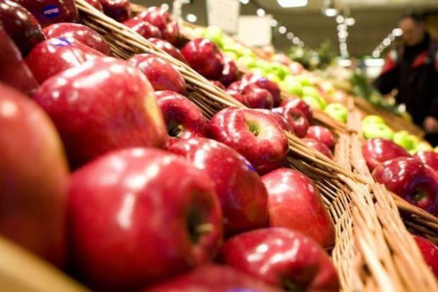 Jabłek dużo i droższe