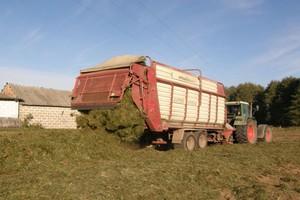 Trwają ostatnie zbiory traw