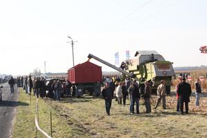 Mokry rok kukurydzy