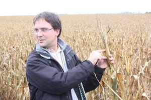 Niezwykle kosztowna i precyzyjna produkcja nasienna