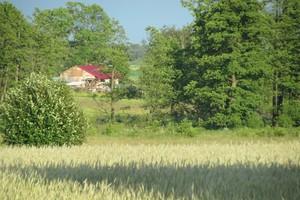Obdarowany gruntem powinien mieć prawo do ekwiwalentu za zalesienie