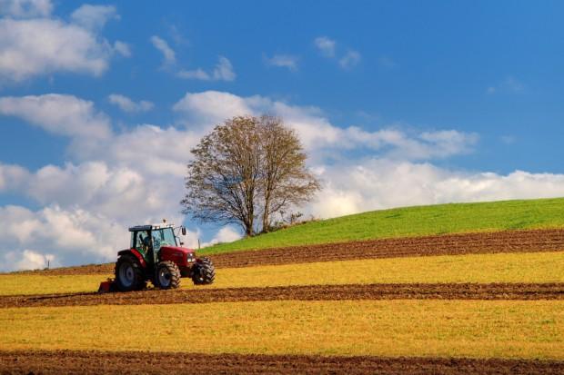 Raport KE: Powierzchnia produkcji ekologicznej wzrasta