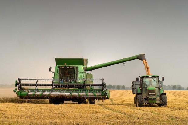 Zbiory pszenicy w Rosji wyniosą co najmniej 50 mln ton