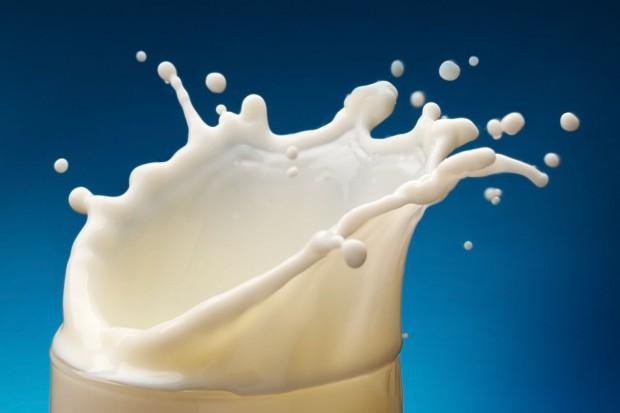 Rekordowy poziom cen skupu mleka