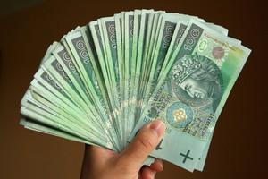 W grudniu 2,3 mld zł na płatności obszarowe