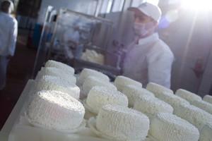 Rekordowe ceny mleka