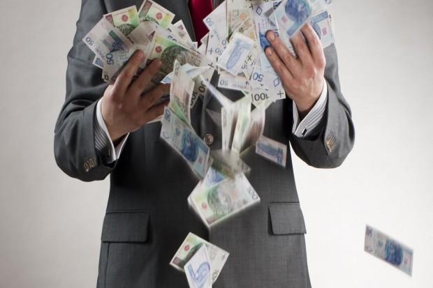 Ile na dopłaty w 2014 r.