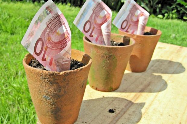 240 zamiast 250 euro na ha to sukces?