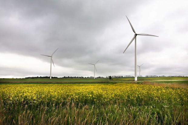 Sąd oddalił wniosek o odszkodowanie ws. farmy wiatraków