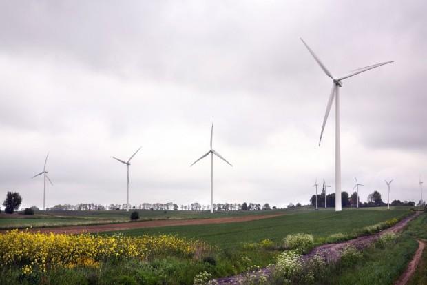 Apel 70 stowarzyszeń i organizacji do premiera ws. farm wiatrowych