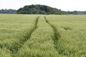 Zawiadomienie PiS do prokuratora generalnego ws. ziemi rolnej