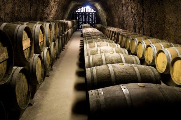 Szkolenie dla początkujących i przyszłych winiarzy