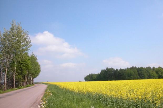 O opłacalności działań rolnośrodowiskowych raz jeszcze