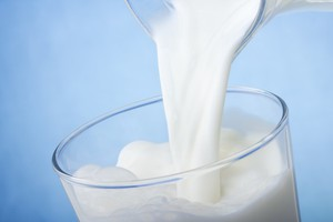 Rośnie eksport polskich produktów mleczarskich