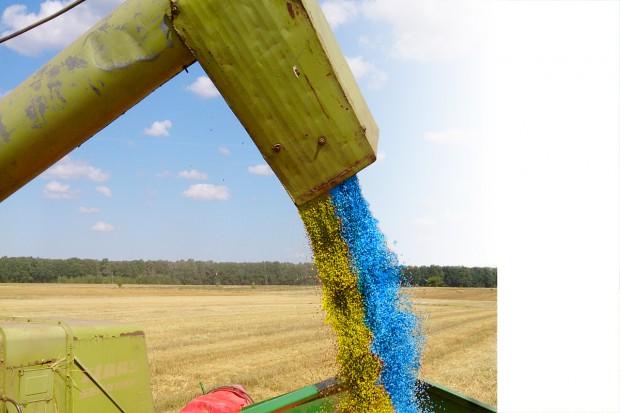 Zasypie nas ukraińskie ziarno?