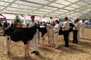 Zielone Agro Show 2014 - Sielinko