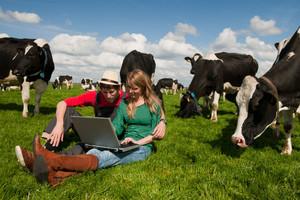 ARiMR: prawie 20 tys. osób wnioskowało o dotacje dla młodych rolników