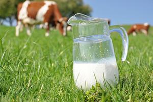 Zakaz importu mleka i produktów mlecznych z 12 ukraińskich firm