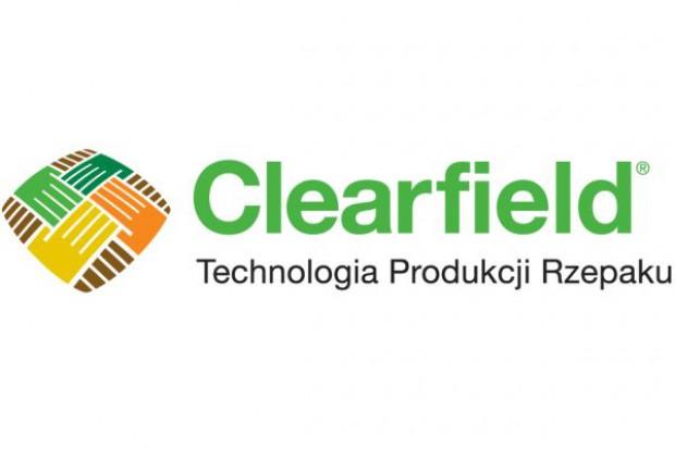 Clearfield - skuteczne zwalczanie chwastów w rzepaku