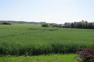 Dotychczasowe zobowiązania rolnośrodowiskowe a nowy PROW