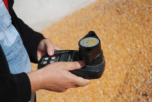 Wilgotnościomierze do zbóż – co wybrać i za ile?