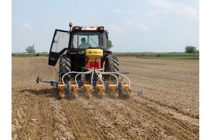 Filary agrotechniki rzepaku uprawianego w szerokich rzędach