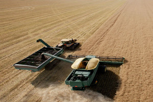 GUS: Zbiory zbóż na poziomie 25,7-26,8 mln t, o 6-10 proc. więcej rdr