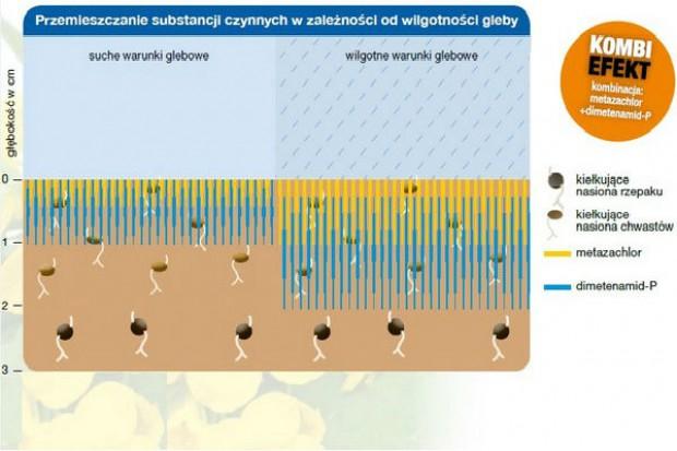 Mniejsza wrażliwość herbicydów na warunki wilgotnościowe w glebie – kompatybilność działania substancji aktywnych
